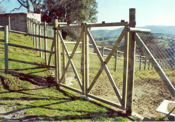 Puerta Doble en Aspa